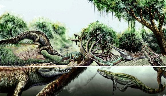 An international group of paleontologists writing in the journal Nature Communications has described two new prehistoric species of crocodile from fossils found in the region of Urumaco, Venezuela.