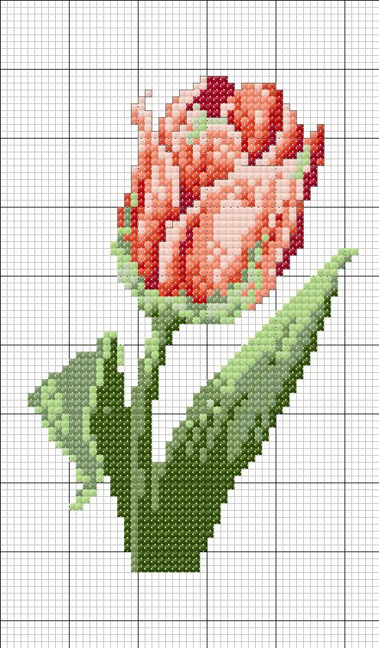 tulipano+rosso+D+-+capolavori+4.JPG (550×940)