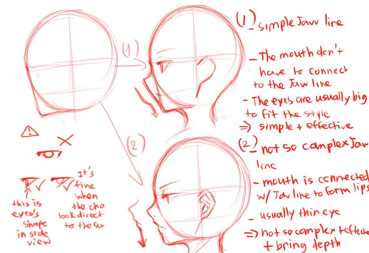 Useless side-view guide by Krissin on deviantART