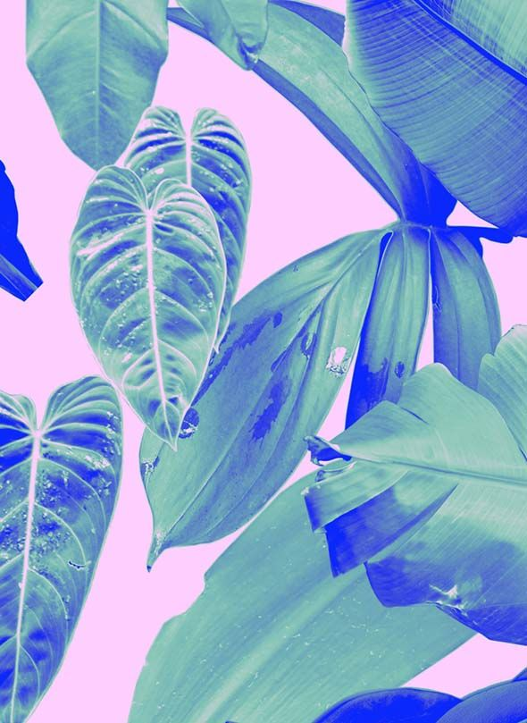 Profile | Rhianna Ellington | Pattern People | Print Studio