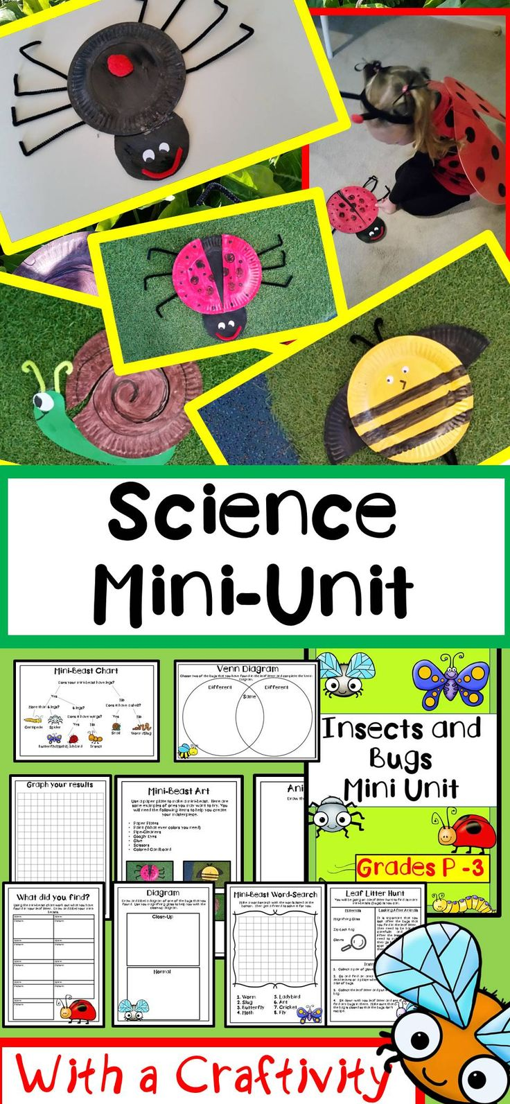 Science Lesson Insects and Bugs Mini-Beasts