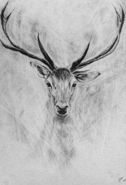 ‪#‎draw‬ ‪#‎draws‬ ‪#‎drawing‬ ‪#‎drawings‬ ‪#‎paint‬ ‪#‎painting‬ ‪#‎paintings‬ ‪#‎art‬ ‪#‎arts‬ ‪#‎deer‬ ‪#‎wild‬ ‪#‎animal‬ ‪#‎animals‬ ‪#‎boredom‬ ‪#‎a3‬ ‪#‎paper‬ ‪#‎pencil‬ ‪#‎Poland‬ ‪#‎Polish‬ ‪#‎Polska‬