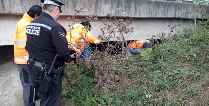 Nekonečný příběh: V Plzni se opět uklízelo po bezdomovcích