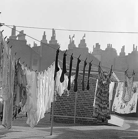 Laundry in an Islington back yard in 1960 by John Gay, photographer