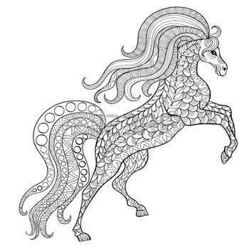 Kézzel rajzolt ló antistressz színező oldal magas részleteket elszigetelt fehér háttér, illusztráció zentangle stílusban. Vector monokróm vázlat. Állatok gyűjtése. photo