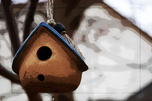 03.05.09 - Bird House | This is one of the bird houses in my… | Flickr