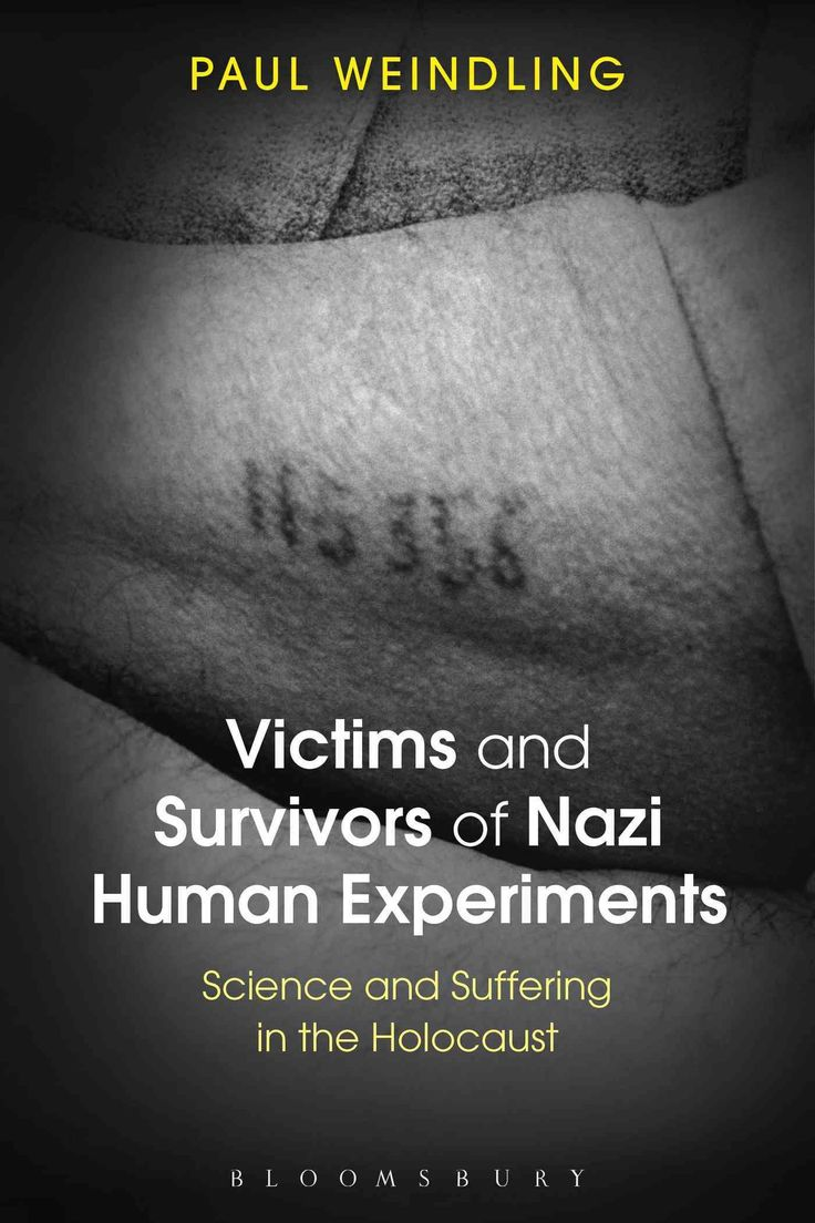 essay holocaust survivors  essay holocaust survivors