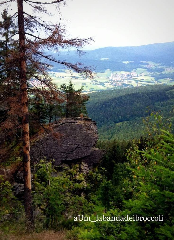 #Bayerischerwald fra natura, benessere e buon cibo (anche glutenfree)