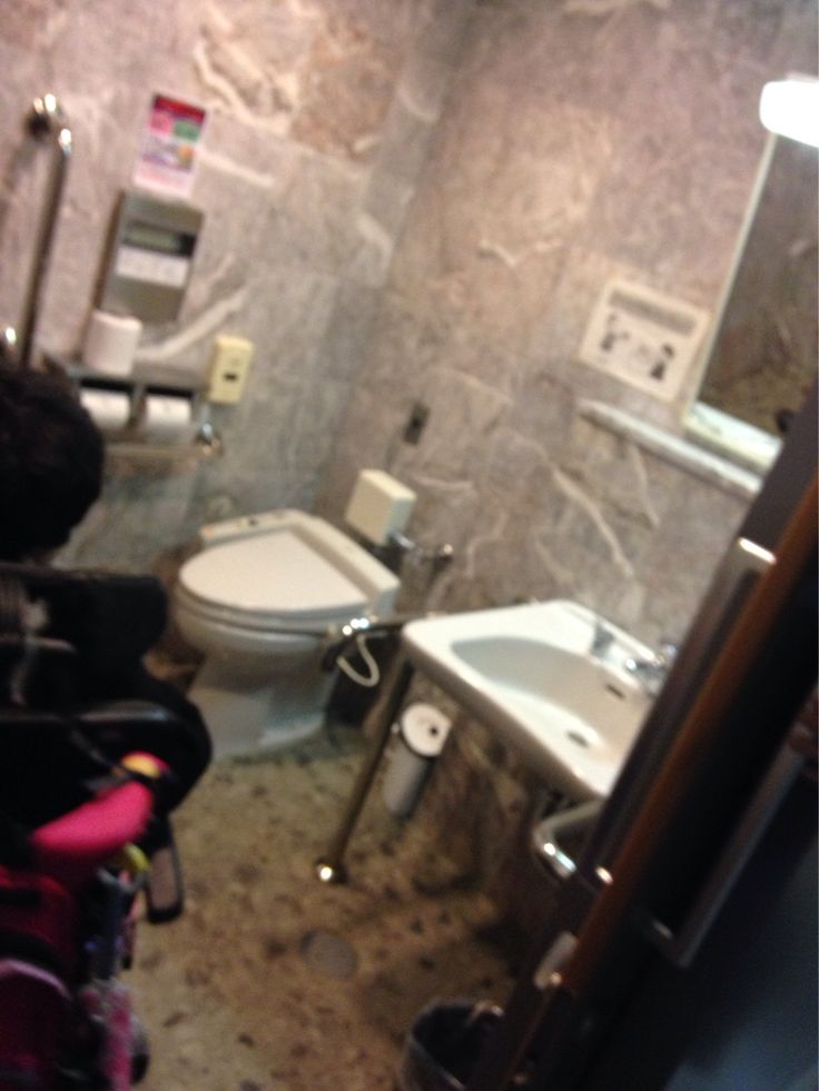 ナショナルトレーニングセンターという、オリンピック・パラリンピックの選手強化施設があります。東京都の広域避難場所にも指定されています。比較的新しい施設でお金もかかっていそうです。しかし、残念なバリアが多い。構内通路の歩道段差、多機能トイレの便座位置が壁により過ぎ(成人でも狭くて使いにくい)。壁や床は豪華たけど、ほんの少