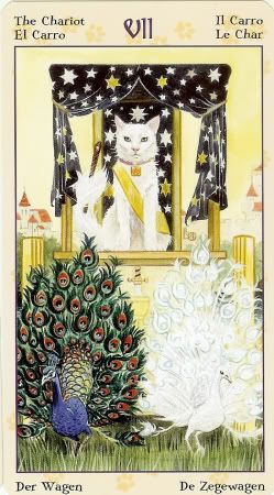 Tarot of Pagan Cats %%%%()()()()....http://www.pinterest.com/vintagebelle76/fortune-telling/