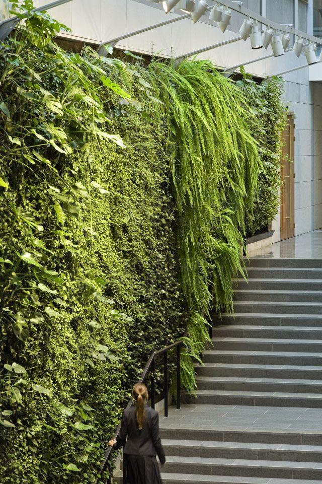 Bedrijf werkzaam in Amsterdam. Verticale tuinen vergroenen verstedelijkte gebieden   Green Fortune