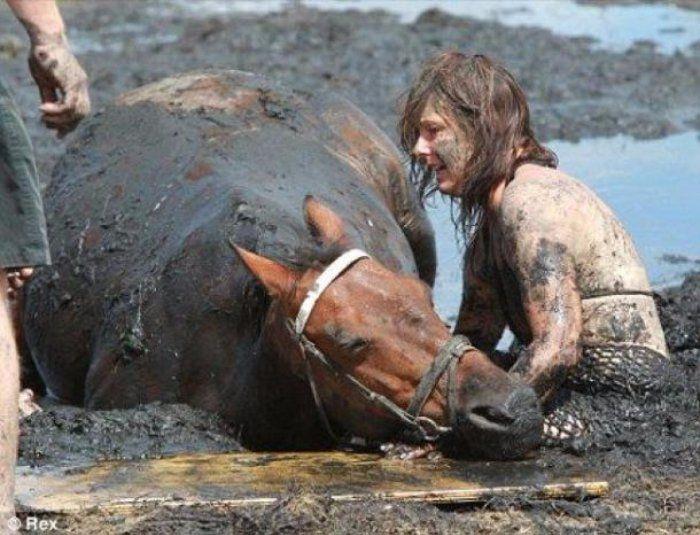 Quand une balade à cheval tourne au cauchemar puis au miracle. C'est ce qu'a vecu Carole, sur le long de la côte de Greenlong, en Australie. Mais grâce son courage et sa ténacité, elle a réussi à sauver son cheval. Émouvante histoire. #histoireémouvante #cheval #miracle