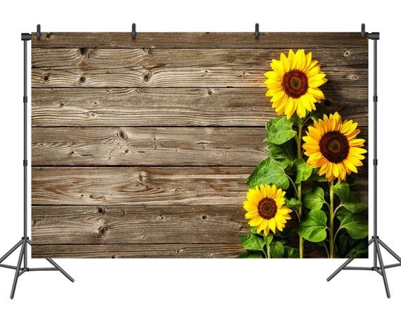 Planks and Sunflowers Wedding Baby Photography Background Custom Photography Studio Photography Background