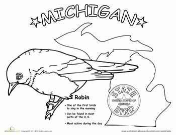 coloring pages for kids and michigan | Michigan State Bird | State birds, Michigan, U.s. states