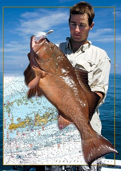 31 best ideas about fishing in florida on pinterest for Best fishing in florida keys