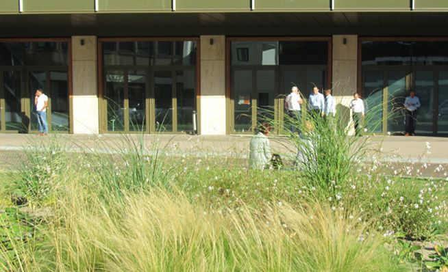 Loos van Vliet - Office garden First, Rotterdam