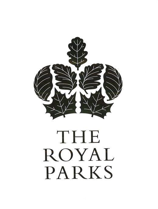 very nice logo, keeps the elegance of a crown