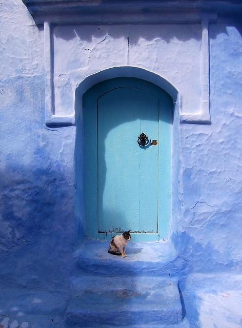 Puerta con Gato en Chefchauen. by Pedro y Sergio, via Flickr