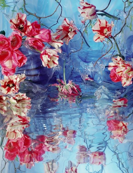 Dragonfly, 2006 - Margriet Smulders