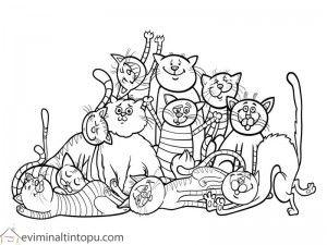 Kedi Boyama Okul öncesi Evimin Altın Topu Boyama