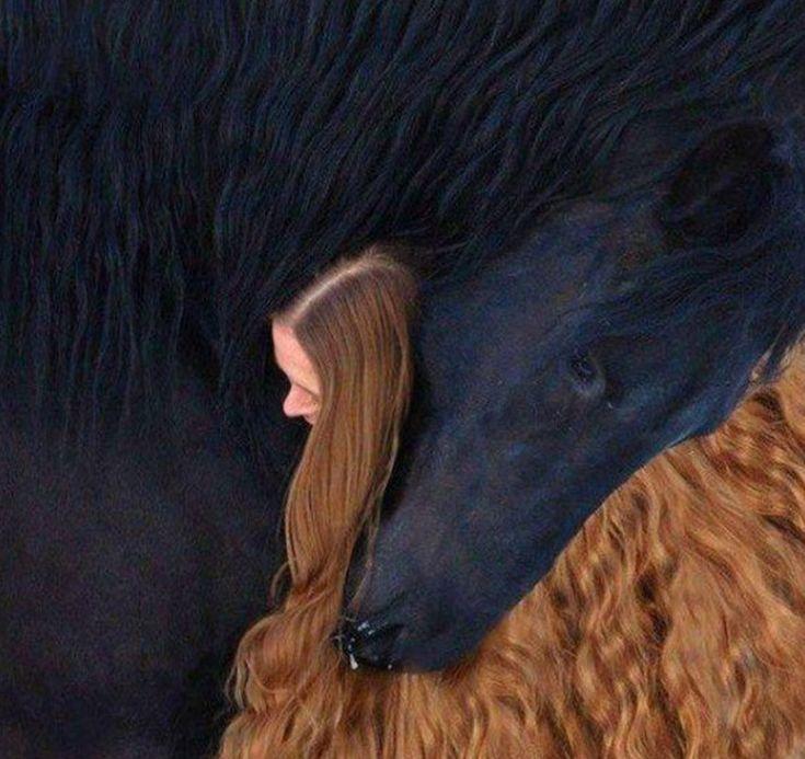16. Девушка и лошадь.