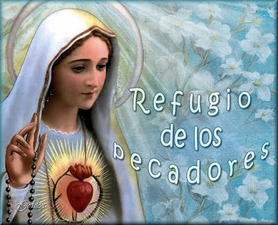MI RINCON ESPIRITUAL: Flor del 25 de mayo: María, refugio de los pecador...