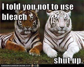 I told you not to use bleach shut up.