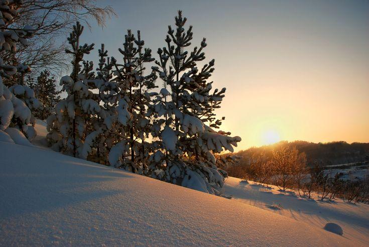 Прощай, Январь!, Алтай