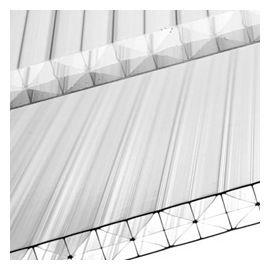 Plaque polycarbonate alvéolaire 5p 400 x 105 cm clair