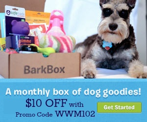 18 best BarkBox! images on Pinterest | For dogs, Puppy love and ...