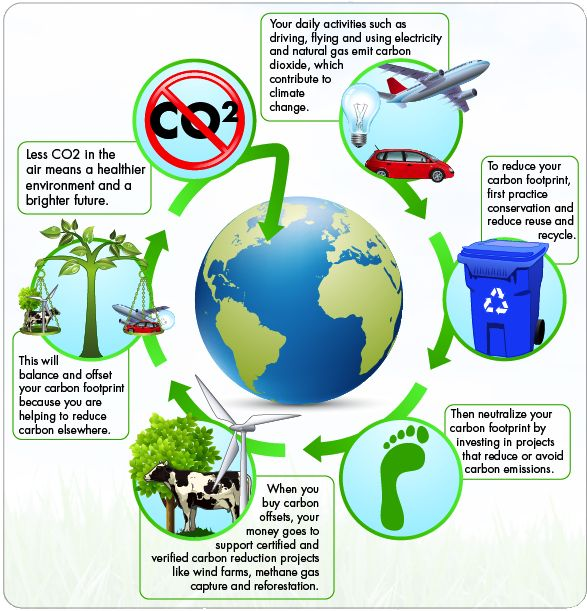 How to Carbon Offset