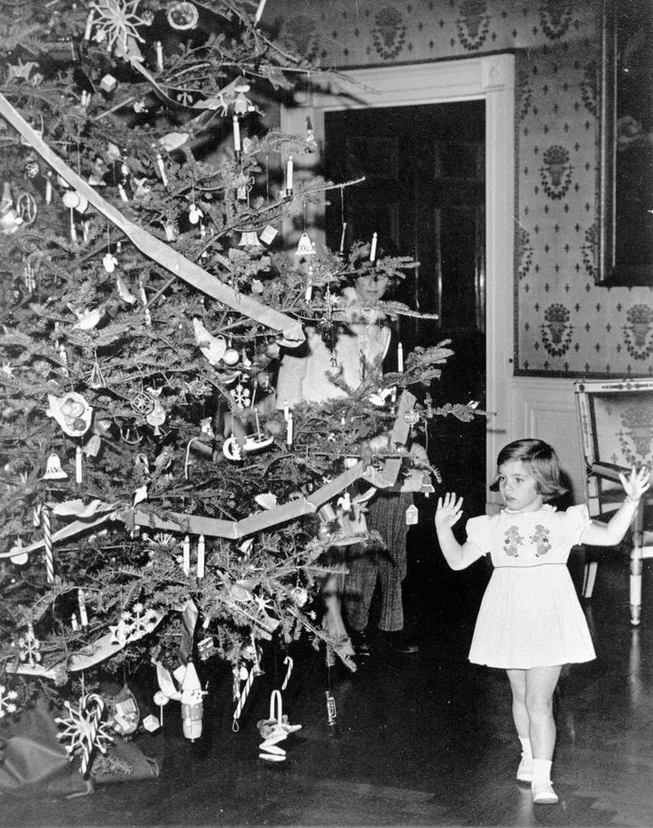 tedkennedyswife:  10/25 Kennedy Christmas: 1962, Caroline admires the White House Christmas tree. Jean and one of her sons can also be seen, behind the tree.♡❤❤❤♡❤♡❤❤❤♡