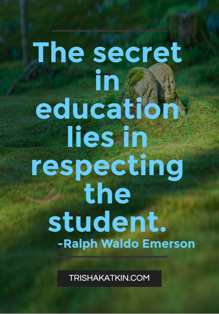 25+ best Student quotes on Pinterest  School life quotes, Student motivation...