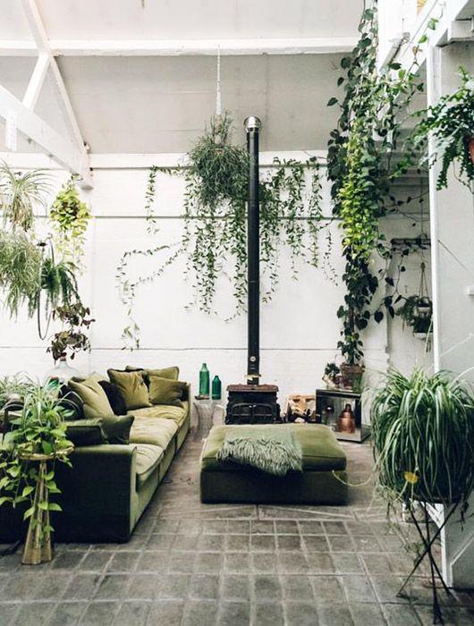 it's a jungle in here. / sfgirlbybay