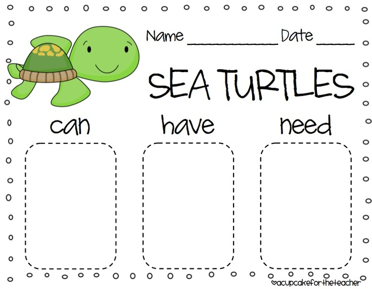 ogranizational chart for sea turtle lesson ocean pinterest teaching graphics and charts. Black Bedroom Furniture Sets. Home Design Ideas