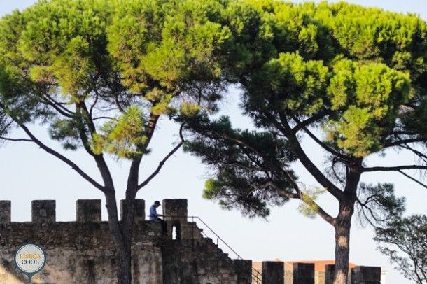 Lisboa Cool - Visitar - Castelo de São Jorge