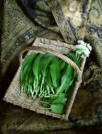 Make the most of the wild garlic season.