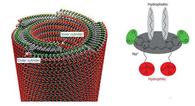 Выскоэффективные фотоэлементы из нанотрубок от подводных бактерий помогут ученым создать принципиально новые солнечные панели - ЭкоТехника