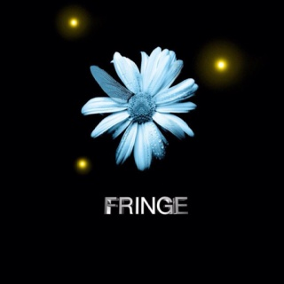 The best tv show 'The Fringe': Tv Show