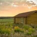 Buffalo Vista Cabin   Zion Mountain Ranch