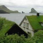 Tetti verdi sulle case in Norvegia