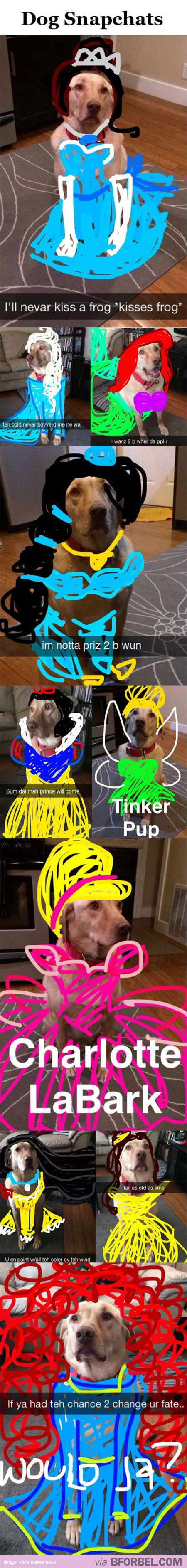 10 Snapchats That Turned This Dog Into A Disney Princess… found this hilarious