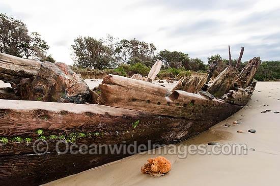 Google Image Result for http://www.oceanwideimages.com/images/12945/large/woolgoolga-shipwreck-24M2866-32D.jpg