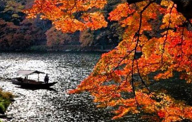 Vancouver in Fall Season Photo Essay   Vancouver Homes Autumn leaf viewing on Taipingshan