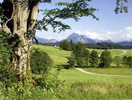 pensionen-allgaeu.de: Ferienwohnungen, Pensionen, Privatzimmer
