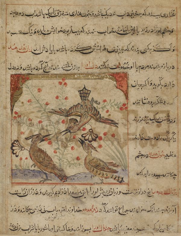 Arts of the Islamic World | Folio from a <i>Manafi'al-hayawan</i> (Usefulness of animals) by Ibn Bakhtishu (d.1058); verso: Three hoopoes and a bush with red berries; recto: text, Description of hoopoes and their body organs as remedies for diseases | F1928.7