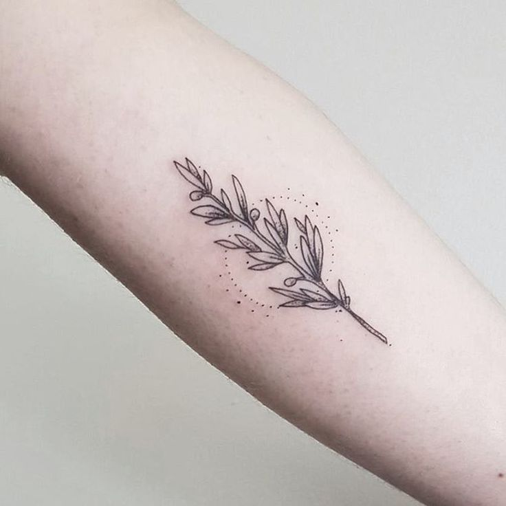 """405 Likes, 7 Comments – Paige Davidson (@paige_tattoos) on Instagram: """"Olive branch for the lovely Hannah today  for any enquiries please email info…"""