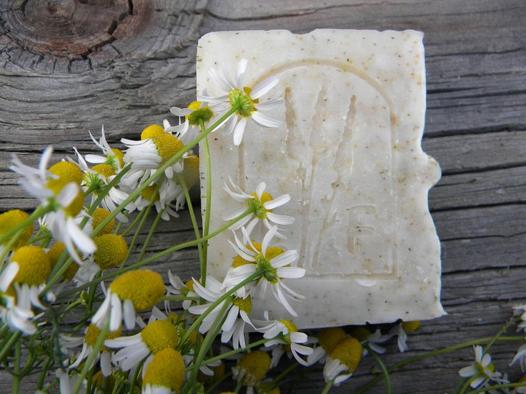 Naturalne, ręcznie robione mydła to odkrycie wielu Wizażanek, które nie wyobrażają sobie bez nich właściwej pielęgnacji. Zapytałyśmy właścicielkę Lawendowej Farmy, panią Ewę Wasilak, o to jak powstają jej mydła, co zawierają, a czego nie i dlaczego są takie dobre dla skóry!