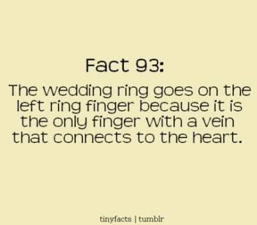 38 Best Ideas Wedding Quotes To A Friend Getting Married Funny