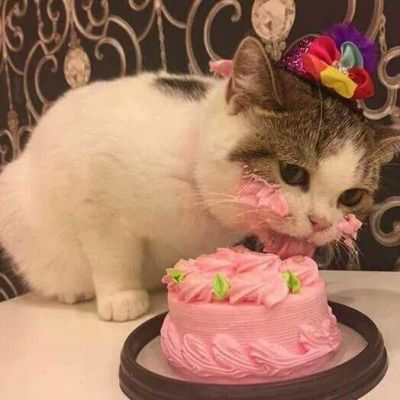 This is the cutest birthday girl!